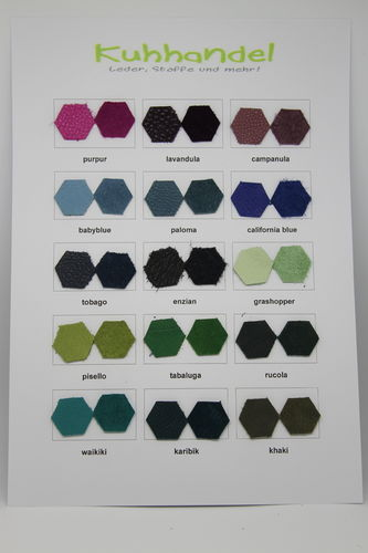 Ecopell leather color sample card